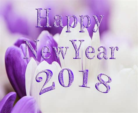 best happy new year greetings happy new year image and pictures 2018 sms wishes