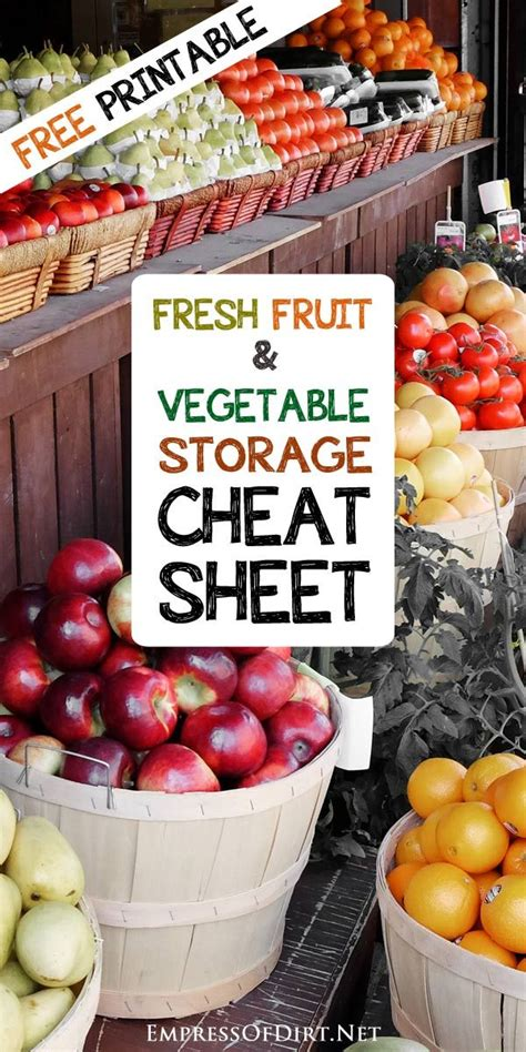Countertop Fruit Storage by 25 Best Ideas About Vegetable Storage On