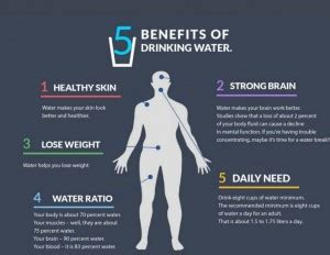 how much water should a drink a day how much water should i drink every day walsh s pharmacy galway