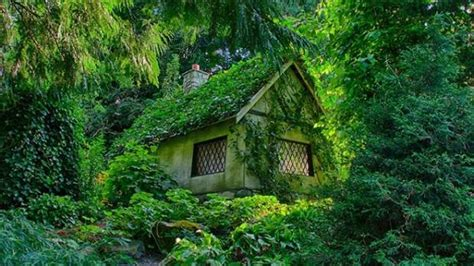 grand designs house in the woods fairy tale houses tell their own stories stuff co nz
