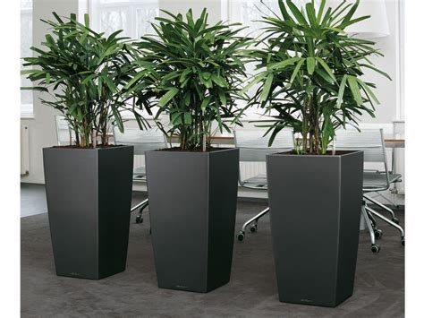 Indoor Flower Planters by Gardening In Restricted Spaces Indoor Planter Boxes