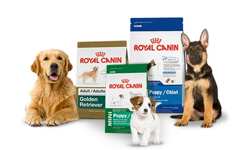 royal canin pug food reviews royal canin food reviews a comprehensive guide