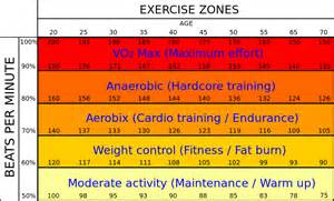 Best heart rate to burn fat fitness health