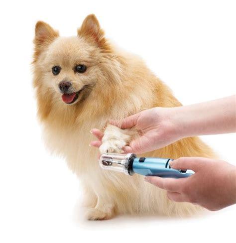 dremel for dogs dremel for nails