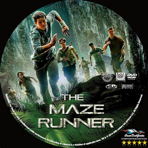 film maze runner dvd the maze runner 2014 dvd cover