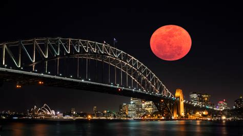 Hong A Blood Moon time out sydney sydney events activities things to do