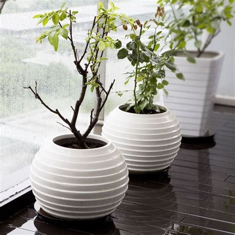 Floor Vase Ideas 25 Best Ideas About Floor Vases On Decorating Vases Home Decor Vases And Rustic
