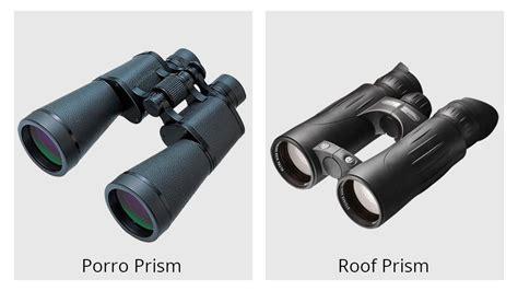 cornell ornithology binocular guide