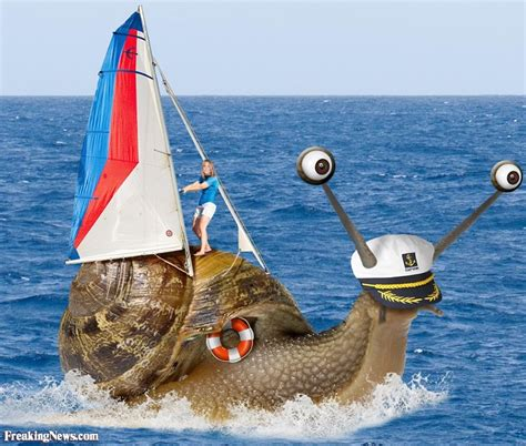 ugly boat pictures funny boats pictures freaking news