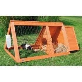 guinea pig hutch plans raising guinea pigs great guine pigs hutches just