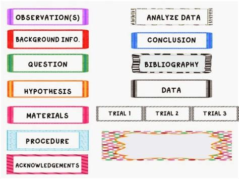 science fair labels templates printable science fair labels science fair board labels