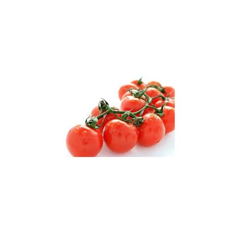 patio princess tomato seeds modern patio outdoor