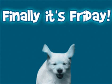 finally it's friday! pictures, photos, and images for