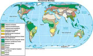 united states biome map maps usa map biomes