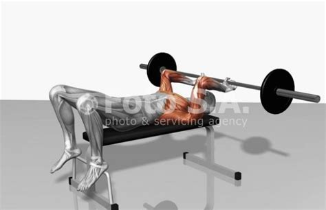 incline bench skull crushers workout1