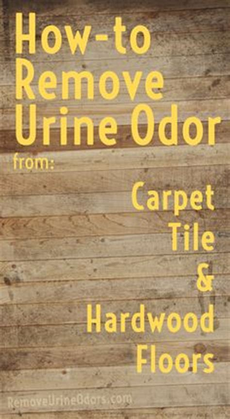 How To Remove Urine From Rug by Clean As A Whistle On Clean Tile Floors