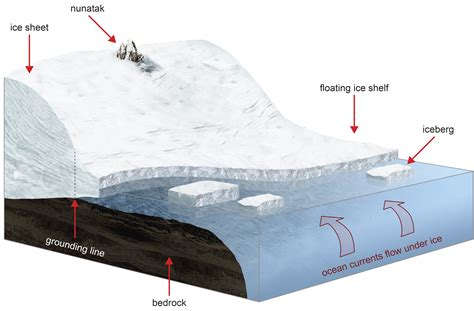 Larsen Shelf by Antarctic Larsen C Shelf At Risk Of Collapse Study