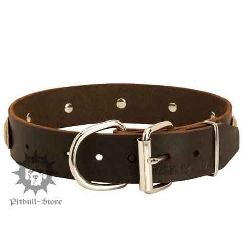 fancy puppy store vintage collar fancy collar 163 31 20