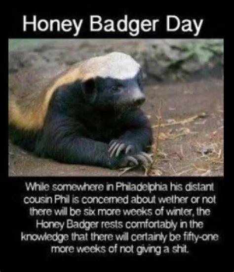 hahaha honey badger dont care quotes  poetry pinterest honey badger  honey