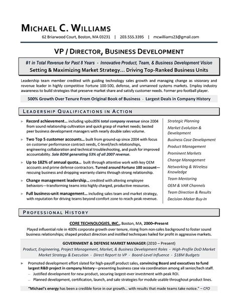 Business Development Resume by Vp Business Development Sle Resume Executive Resume