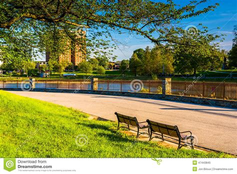 park bench baltimore benches at druid hill park in baltimore maryland stock