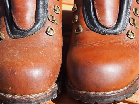 boot and saddle review huberd s boot saddle soap robonza
