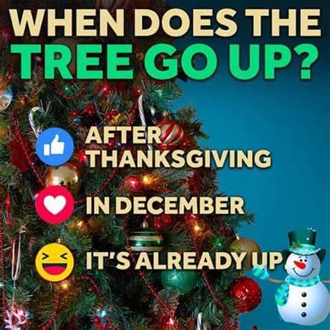 when does the tree go up pictures photos and images for