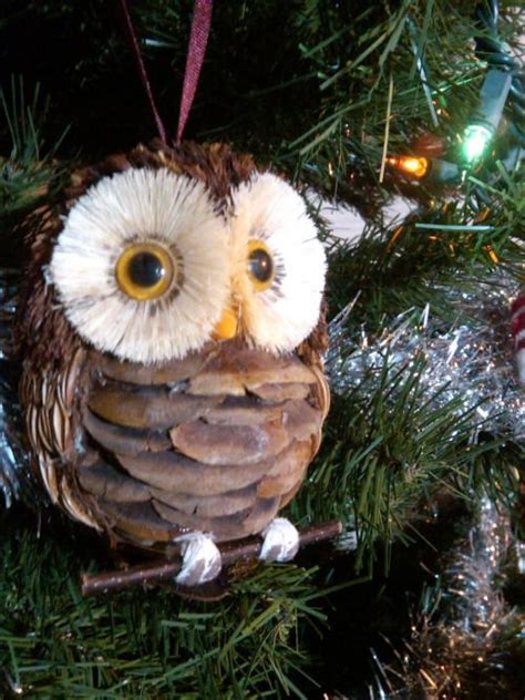 jhwaholmquist my pinecone owl crafts pinterest posts pinecone owls and owl