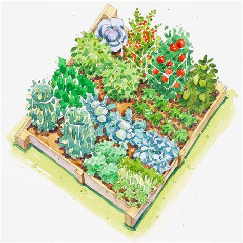 Flower And Vegetable Garden Layout Companion Planting