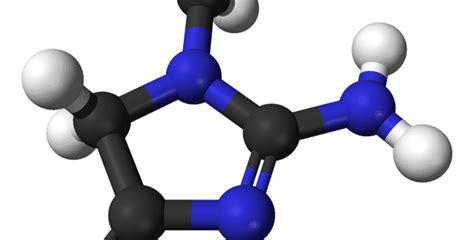 creatinina y creatinina creatinina buen indicador funcionamiento de los ri 241 ones