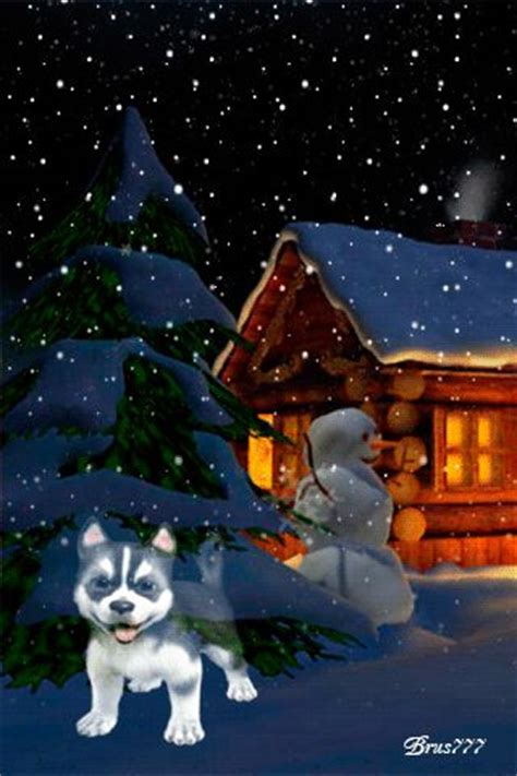 top  ideas  gif  pinterest blue christmas christmas trees  merry christmas