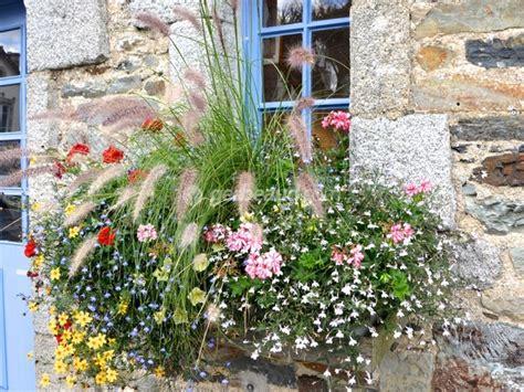 Plante Pour Jardiniere Exterieur Plein Soleil