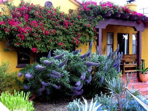 Oak Trellis Bougainvillea Landscape Design Landscape Mediterranean