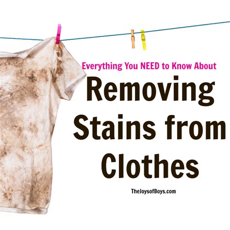 Removing Stains From by How To Remove Stains From Clothes Everything You Need To
