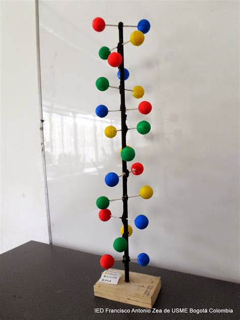 cadena de adn con limpiapipas ideas para mi mundo maquetas de adn 2014