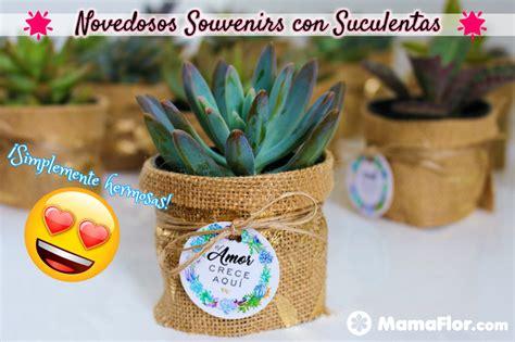 souvenirs cactus maipu recuerdos de matrimonio en ceramica blanca novedosos souvenirs con suculentas y mini cactus