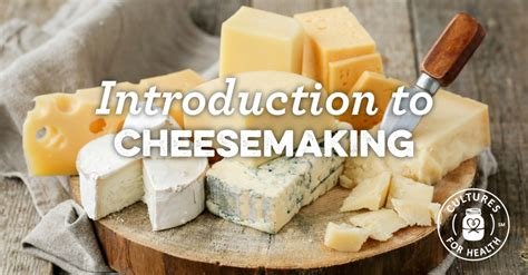 Handmade Cheese - introduction to cheese cultures for health