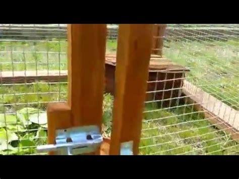 recinto per tartarughe in giardino come realizzare un recinto per le tartarughe animali dal