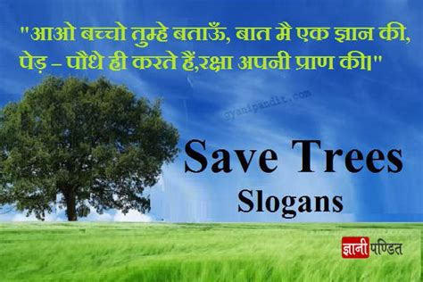 Plant Trees Save Earth Essay by Plant Trees Save Environment Essay In Docoments Ojazlink