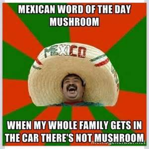 Mexican Memes In Spanish - mexican word of the day antz in pantz