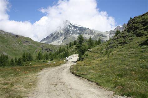 d italia cai ambiente alpino a rischio in valle d aosta 2 i camosci
