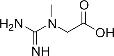creatine structure file creatine neutral png wikimedia commons