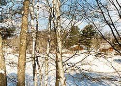 winter cabin rentals near x ski races and american