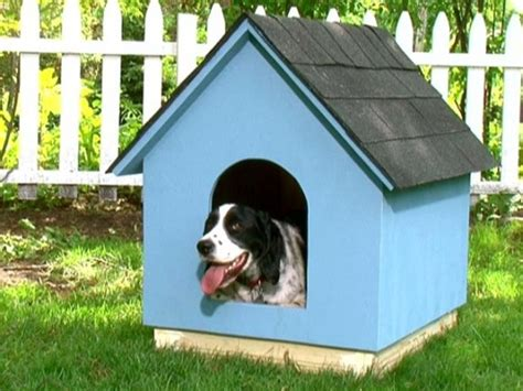 building a simple dog house diy dog houses dog house plans aussiedoodle and labradoodle puppies best