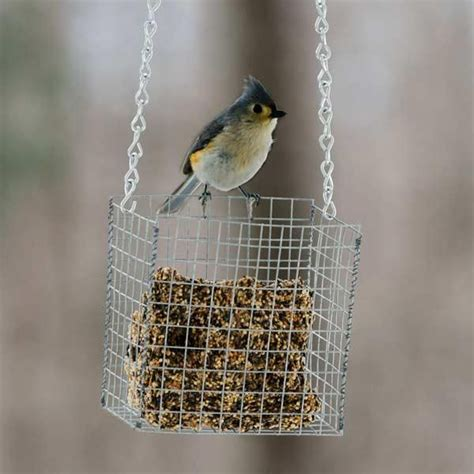 10 uses for hardware cloth bird feeder
