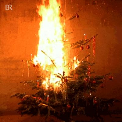 burning christmas tree gifs find share on giphy