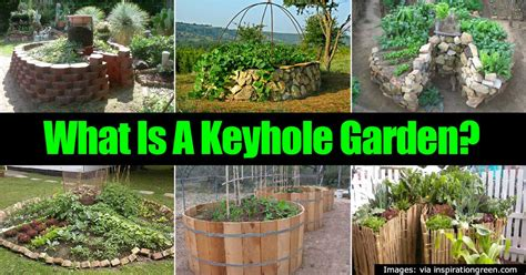 Food Beds What Is A Keyhole Garden