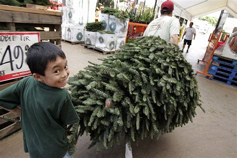 home depot selling christmas tree starbulletin business 2006 12 17