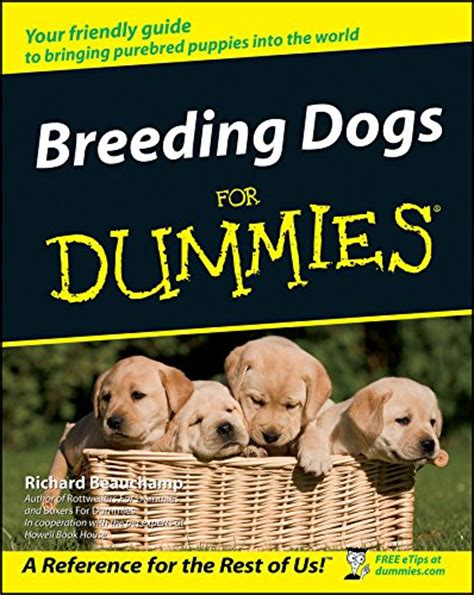 puppy for dummies happy world book day 5 great books