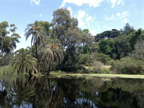 hotels near botanical gardens melbourne hotels near royal botanic gardens melbourne hotels near
